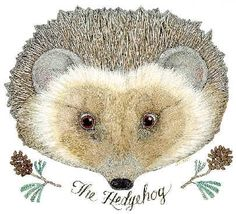 Jan Brett Hedgehog                                                       …