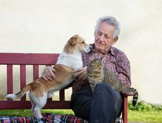The Gifted Pet  ♥: Heart Health for Humans and Pets