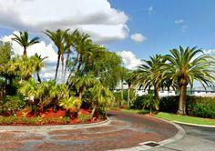Fort Myers Florida, Golf Courses, Sidewalk, Sidewalks, Pavement, Walkways