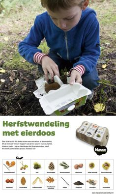 Daar is de herfst! Het ideale seizoen voor een natuur- of boswandeling. Wil je meer dan 'zomaar' stappen? Laat je kind speuren naar de planten, bladeren, zaden … op de afbeeldingen die jij op een eierdoos kleeft. Wie heeft aan het einde zijn eierdoos helemaal vol?