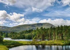 6 Fantastic Family Walks Near Coniston Mountain Cottage, Lake Cottage, Cottage Homes, Lake District Holidays, Lake District Cottages, Bowen Island, Future Travel, Lake View, The Locals