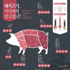 """""""이건 제 전문입니다만"""" 대한민국이 사랑하는 돼지고기 [인포그래픽] #pork / #Infographic ⓒ 비주얼다이브 무단 복사·전재·재배포 금지"""