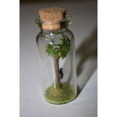 Tiny Bear Climbs Tree in Tiny Bottle