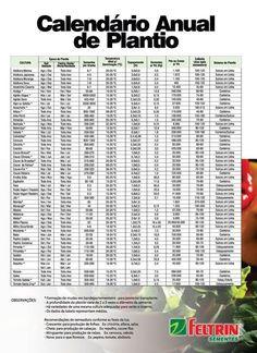 Calendário de Plantio | Feltrin Sementes
