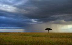 Rain & storm by Gowri Saligram, via 500px