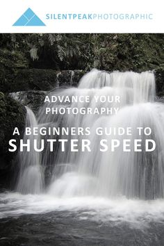 Improve your photography by understanding and setting your camera's shutter speed. Find out how shutter priority helps you take better photographs more easily.