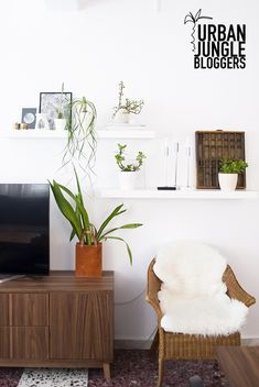 Urban Jungle Bloggers: My Plant Shelfie by @myparadissi
