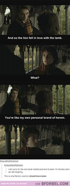 Mix Up Harry Potter With A Little Twilight…