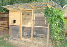 Want to keep chickens? Here's how to build your own chicken coop.