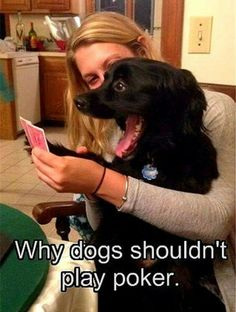 Why dogs shouldn't play poker.