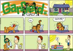 Should bring the pool inside and out of the sun. Garfield And Odie, Garfield Comics, Hagar The Horrible, Jim Davis, Fat Cats, Comic Strips, Humor, My Favorite Things, Funny