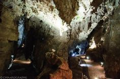 Sterkfontein caves - The Cradle of Humankind