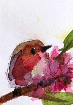 Robin no. 225 original bird watercolor painting Angela Moulton ACEO Art | Art, Direct from the Artist, Paintings | eBay!