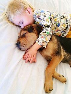 Il bimbo e il cucciolo sono migliori amici: la mamma scatta ogni giorno una foto ~ Cuccioli che passione
