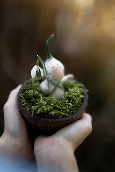 felted snowdrop flower child for the Waldorf season table - Modern Waldorf Crafts, Waldorf Toys, Diy Felt Christmas Tree, Christmas Tree Toppers, Garden Ornaments, Felt Ornaments, Diy Bebe, Nature Table, Succulents Diy