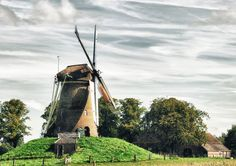 Windmill of the Week  'Bronkhorstermolen' in Bronkhorst