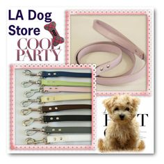 """""""LA Dog Store"""" by ladogstores ❤ liked on Polyvore featuring Draper James"""