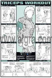 Triceps Workout Poster