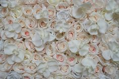 Blush, white, cream rose & orchid flower wall floral backdrop, reusable and durable, ideal for weddings by TheFlowerWallCompany on Etsy