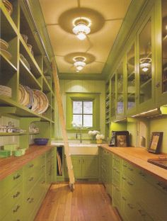A new twist on an old classic....Butlers pantries!  counter space, extra sink, more storage