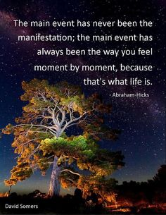 "*The main event has never been the manifestation. The main event has always been the way you feel moment by moment, because that is what life is."" ~Abraham-Hicks"