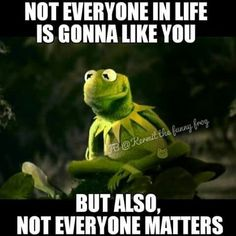 Kermit the Frog Funny Shit, Stupid Funny Memes, Funny Relatable Memes, Haha Funny, Hilarious, Funny Stuff, Funny Kermit Memes, Funny Cartoons, Memes Humor