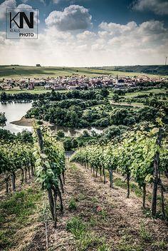 Sommerach, Mainschleife, Franken, Bavaria, Germany
