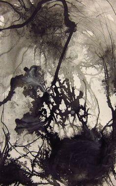 annedilorenzo: neuron still life Ink on Paper, 2011