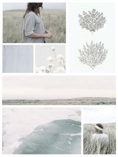 The Ocean bed Next Holiday, Lifestyle Photography, Decorating Your Home, Typography, Design Inspiration, Ocean, Tapestry, Creative, Illustration