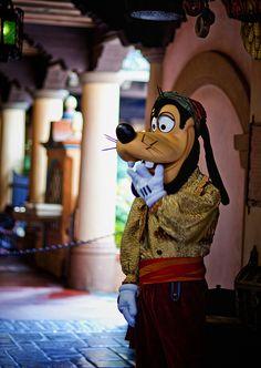 Magic Kingdom - Goofy