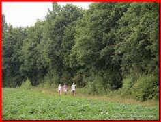 Jubbega Op e Slûs route 20.07.2016 - Albert en Meintsje - Picasa Webalbums