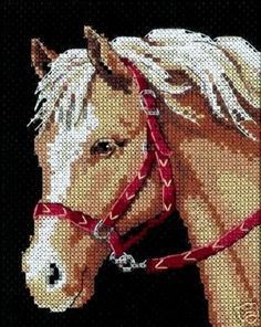"Counted Cross Stitch kit 5"" x 7""  FAVORITE PONY"