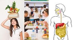 Nutrition: What Your Body Needs | Encourage students to take a scientific approach to personal health and good food choices through this WGBH interactive lesson promoting literacy skills. | PBS LearningMedia