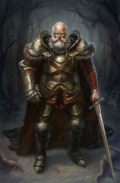 Old noble, warrior, right hand, ornate armor, knight, bold with long white beard, lord, commander, chief, earl, baron. RPG, D&D, DnD. Unknown artist =/: