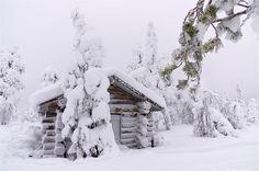 Pyha-Luosto NP, Finland by TenA.NL