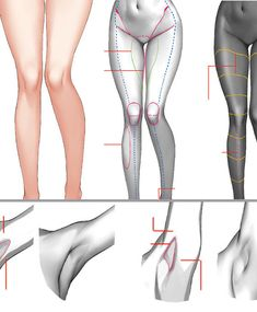 Body Reference Drawing, Art Reference Poses, Anatomy Reference, Anatomy Poses, Anatomy Art, Body Anatomy, Drawing Poses, Girl Drawing Sketches, Drawings