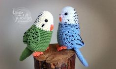 brilliant budgies! or pair of love birds!! Pet week at Dress-A-Doll www.dress-a-doll.co.uk #birds #crochet #pets #ragdolls