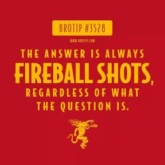 Fireball shots chased with jack daniels! Whiskey Meme, Whiskey Quotes, Whiskey Girl, Beer Quotes, Fireball Drinks, Fireball Whiskey, Fireball Recipes, Alcohol Recipes, Salud