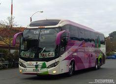 https://flic.kr/p/ZmSXEh | ← Buses Linatal ©→ | Mascarello Roma 370 - Scania - Numero Nº177 - Ruta Concepcion Talca - imagen Sergio Arteaga 2017 - Concepcion  (TATOBUSES)