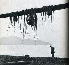 On allait au bord de la mer Avec mon père, ma sœur, ma mère (Hiroshi Watanabe)