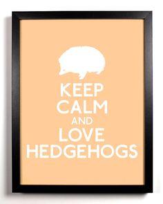 Keep Calm and Love Hedgehogs Hedgehog 8 x by KeepCalmAndStayGold,