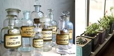 DIY Apothecary Jar: not for the OCD — Cass & Merlune: Quirky Vintage Home decor and nature-inspired baby mobiles Apothecary Bottles, Antique Bottles, Vintage Bottles, Bottles And Jars, Vintage Labels, Glass Bottles, Vintage Perfume, Antique Glass, Perfume Bottles