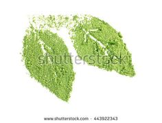 Powdered matcha green tea in leaves shape, isolated on white - Shutterstock Premier