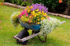 Wheelbarrow as a container