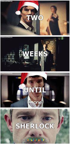 Two weeks until Sherlock! (The christmas lights on John's mustache... Im dying!! Hahaha!!!!)