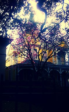 St. Charels ave New Orleans