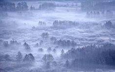 美しい冬の朝(イタリア)