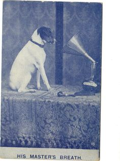 RCA Victor Nipper Dog His Master's Breath 1900's Very Early Phonograph Postcard   eBay