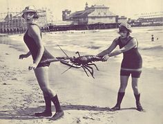 Lobster Bygone summers... Love the swimsuits and the old boardwalk.  #indigo #perfectsummer
