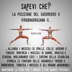 istruzioni video incluse Stack 52 carte per esercizi di yoga: progettate da istruttore di yoga certificato lingua italiana non garantita per principianti e giochi di allenamento Asana per migliorare il fitness e la flessibilit/à.